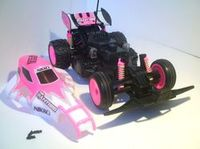 Buggy Nikko Panther 1/16 Evo Pro-Line